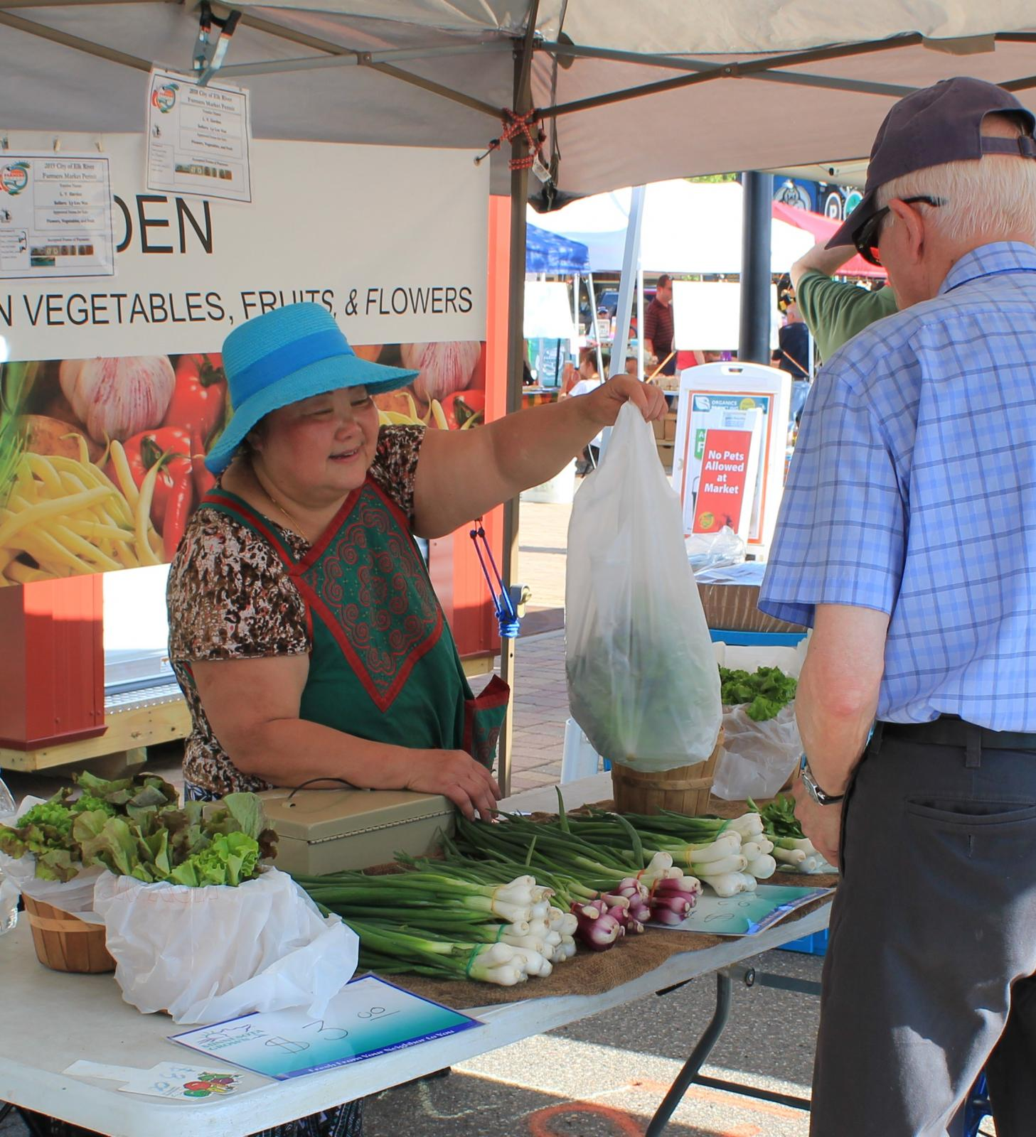 Farmers Market Bringing Fresh Food and Fun to Downtown Main Photo